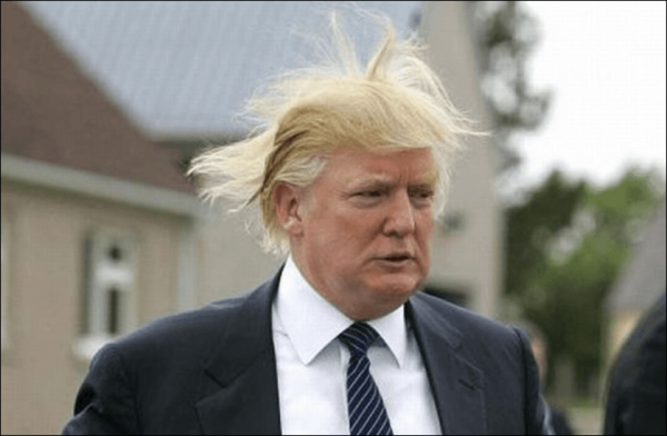 trump_in_the_wind